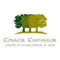 logo_conaculcastanilor